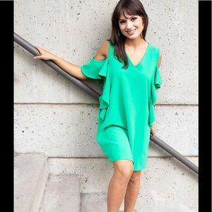 Dresses & Skirts - Green Carole Christian dress